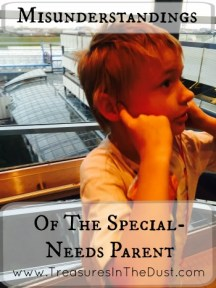 Misunderstandings Of The Special Needs Parent