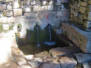Spring water from one of the fountains on Isla del Sol.