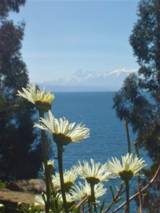 qA view of Lake Titicaca and flowers from Isla del Sol.