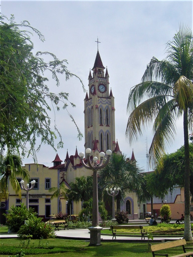 Also surrounding the Plaza de Armas is the neo-Gothic Iquitos Cathedral.