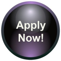 This button links to https://treasurevalleyartistsalliance.org/apply-now/