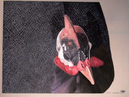 """Guinea Fowl"" gouache & acrylic on parchment. 18"" x 24"""
