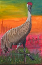 Sandhill Crane II, acrylic on canvas, 24 x 36""