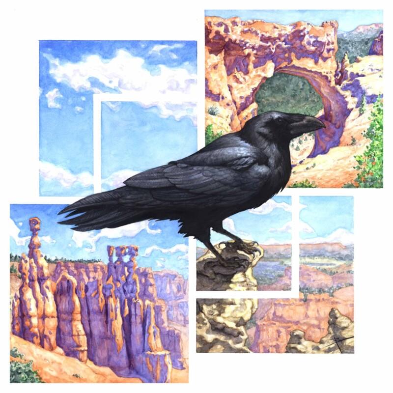 Trott, ravens_eye_view