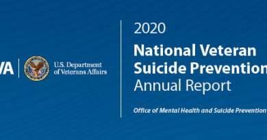 National Veteran Suicide Prevention Annual Report 2020