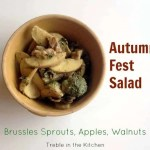 Tara's Autumn Fest Salad (With roasted brussels sprouts, apples, and walnuts)