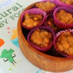Pumpkin Banana Snack Bites from Natural Baby Food
