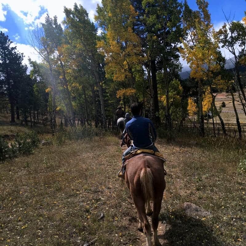 The Dao House Horseback Riding