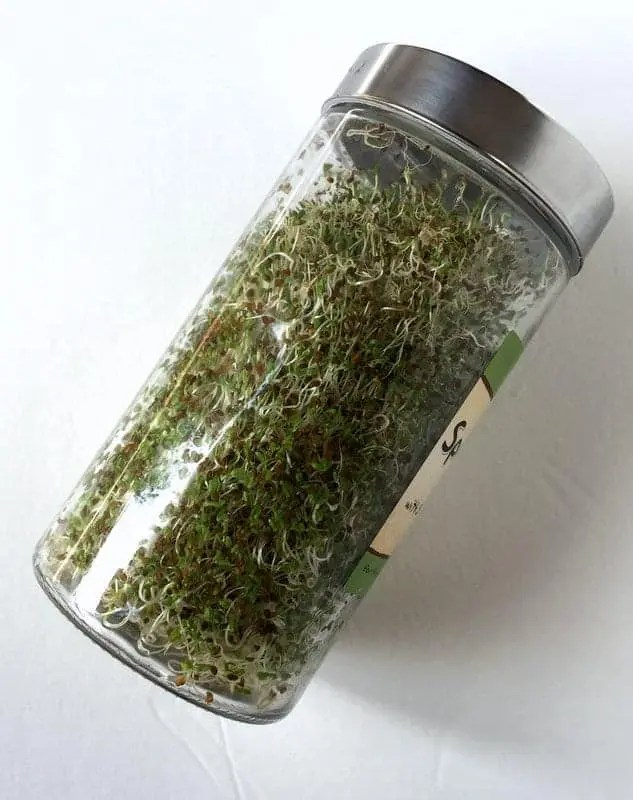 Now Foods Sprouting Jar
