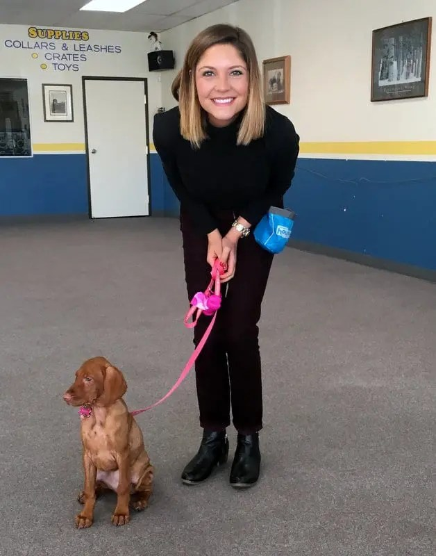 Rooney at puppy school