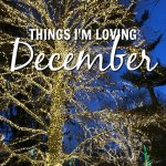 Things I'm Loving: December 2017