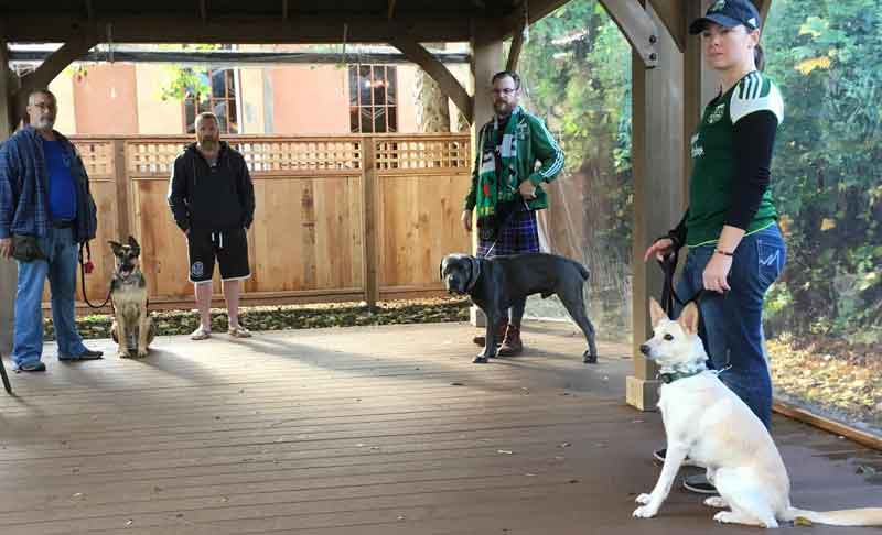 Dog Training Class at Tré Bone