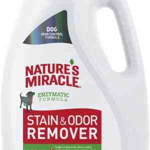 Natures miracle stain odor dog gallon