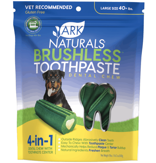 ARK Naturals Brushless toothpaste large