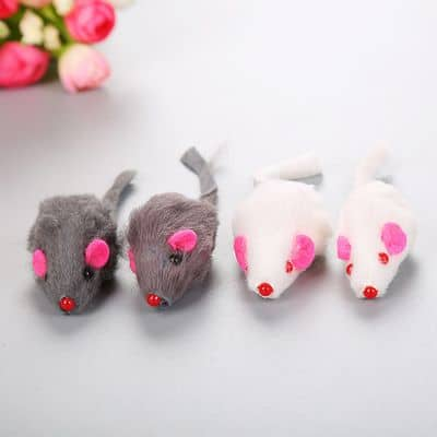 Amazing Pet Products Short hair mouse
