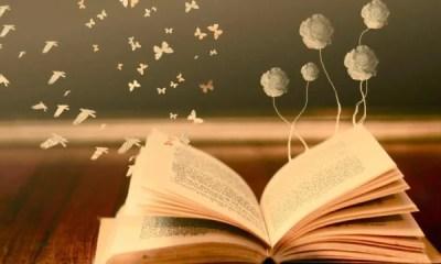 Num universo literário cheio de sagas e trilogias, existem livros curtos que ficam esquecidos, Conheça agora 5 livros de volume único para ler rapidinho.