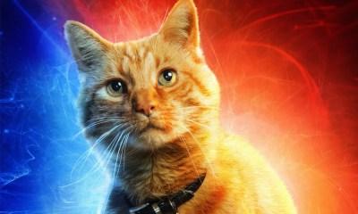 Capitã Marvel | Gato Goose rouba a cena após primeiras exibições do filme