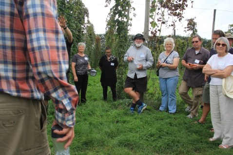 Hop research at Riwaka