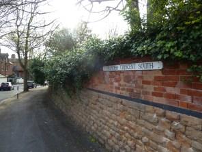 Brendan Tree Feller - Ivy Clearance Job - the Park, Nottingham - Photo 01 - before