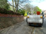 Brendan Tree Feller - Ivy Clearance Job - the Park, Nottingham - Photo 09 - after