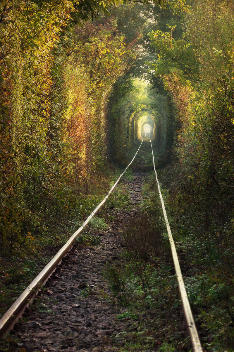 Tunnel of Love by Ron Azevedo