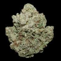 SILVER BACK GORILLA INDICA 4 GRAMS FOR $55