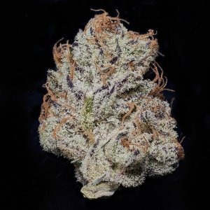 MEDUSA PURE KUSH x MENDO BREATH  INDICA  4 GRAMS FOR $55