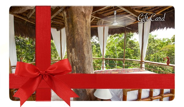 giftcard_treehouse_medsmall