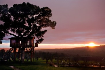 sunset at La Piantata Black Cabin Treehouse