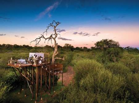 Treehotel in South Africa - Lion Sands Chalkley Treehouse-002