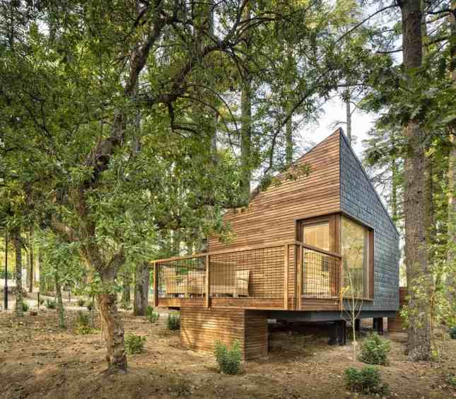 Pedras Salgadas Spa Tree houses - Tree houses in Portugal-007