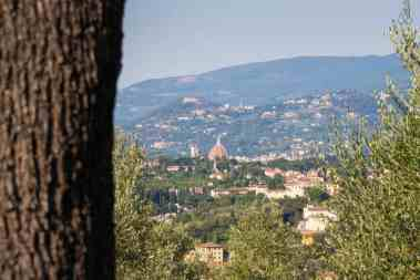 Treehouse in Italy, Toscana - casaBARTHEL Florence-032