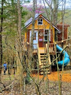 Enchanting Tree House with a Slide on 200 Acres for a Family Adventure in Germantown, Kentucky