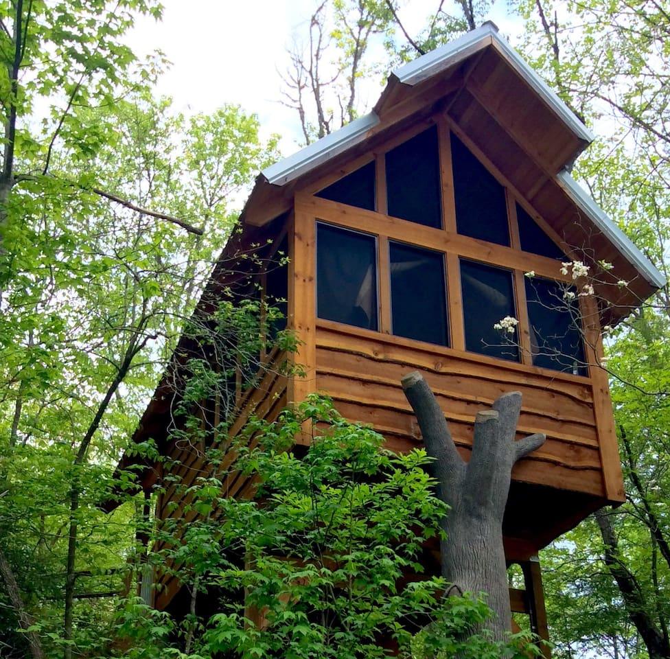 Gatlinburg Luxury Tree House