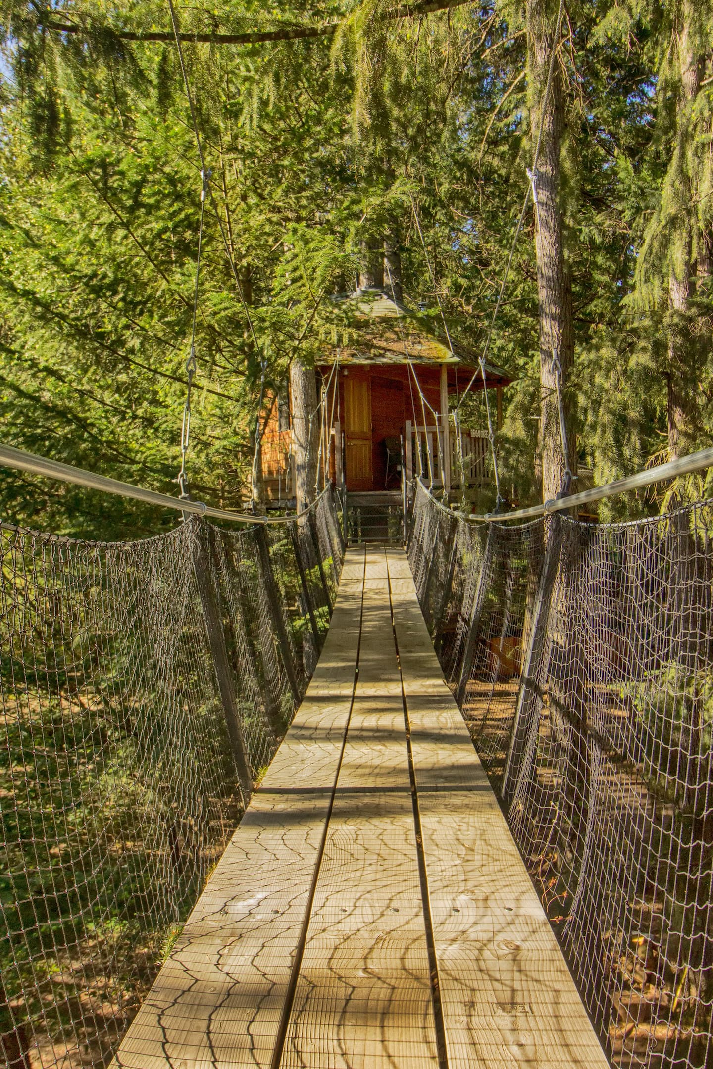 Treehouses in Oregon Airbnb