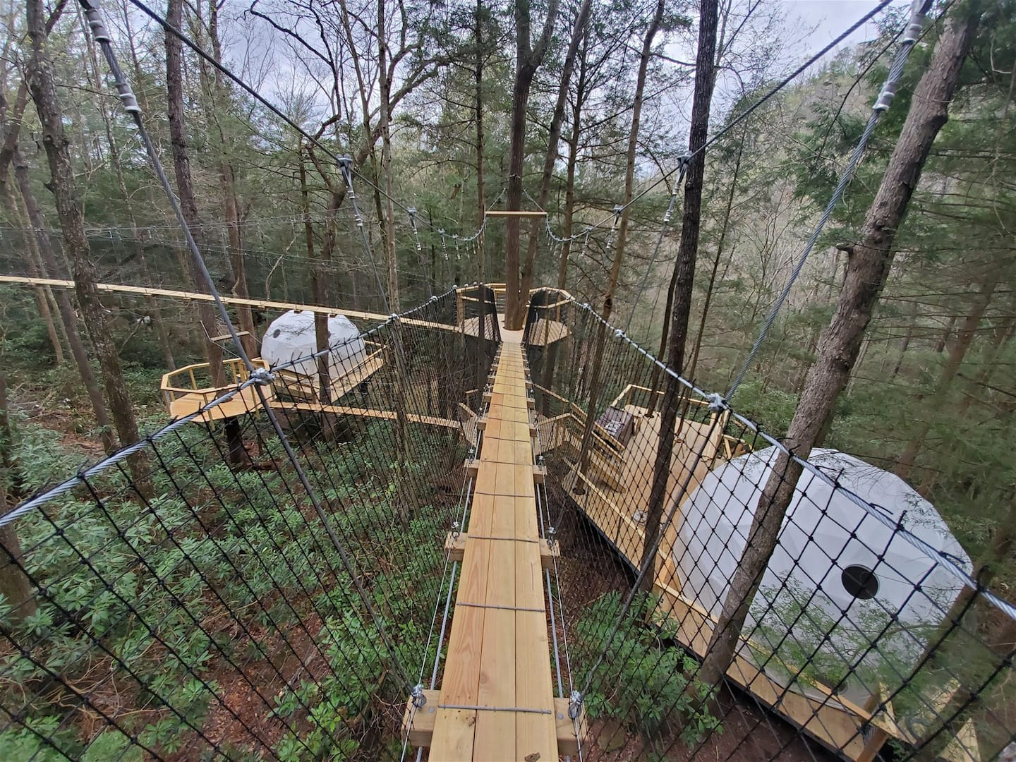 Cloud Dome Treehouse Glamping Kentucky
