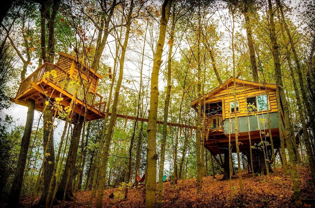 Treehouse Rentals in Kentucky