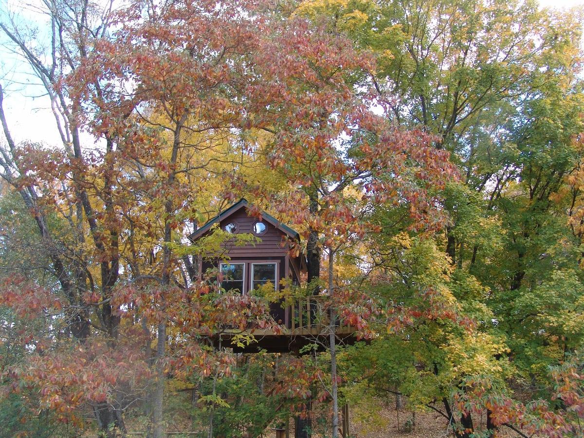 Maple Oak treehouse