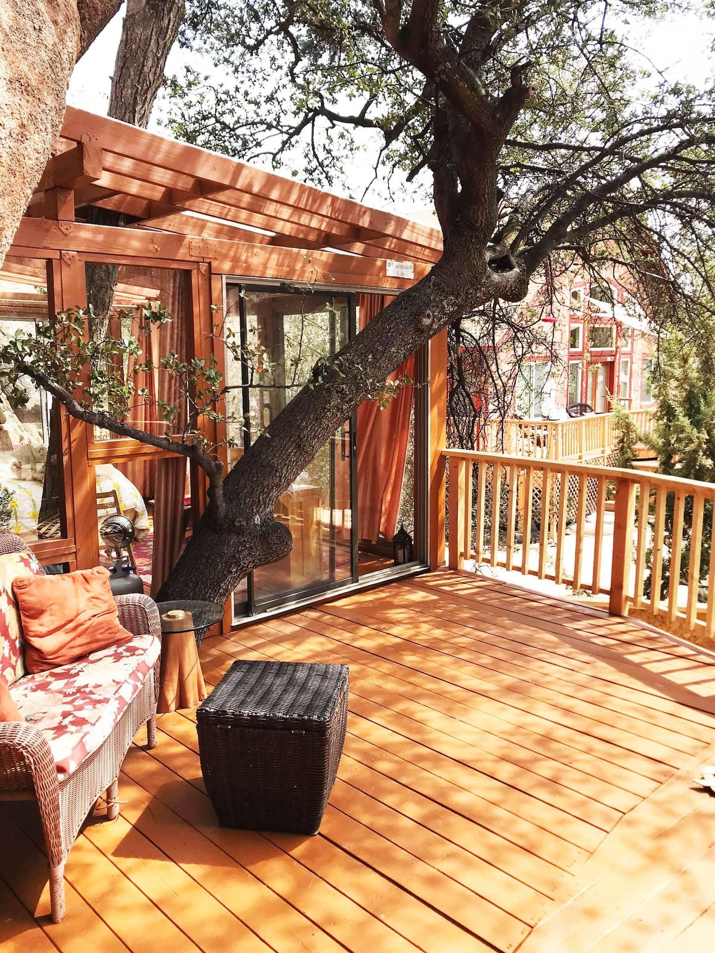 Arizona Treehouse Rental Airbnb