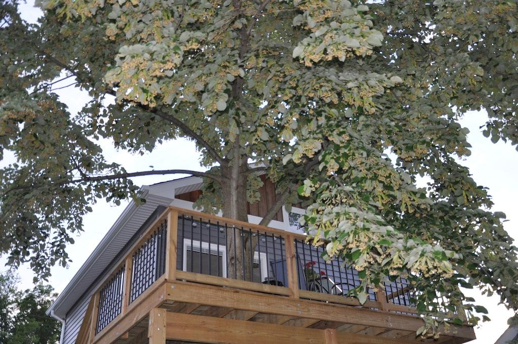 Treehouse Loft Maryland Rental