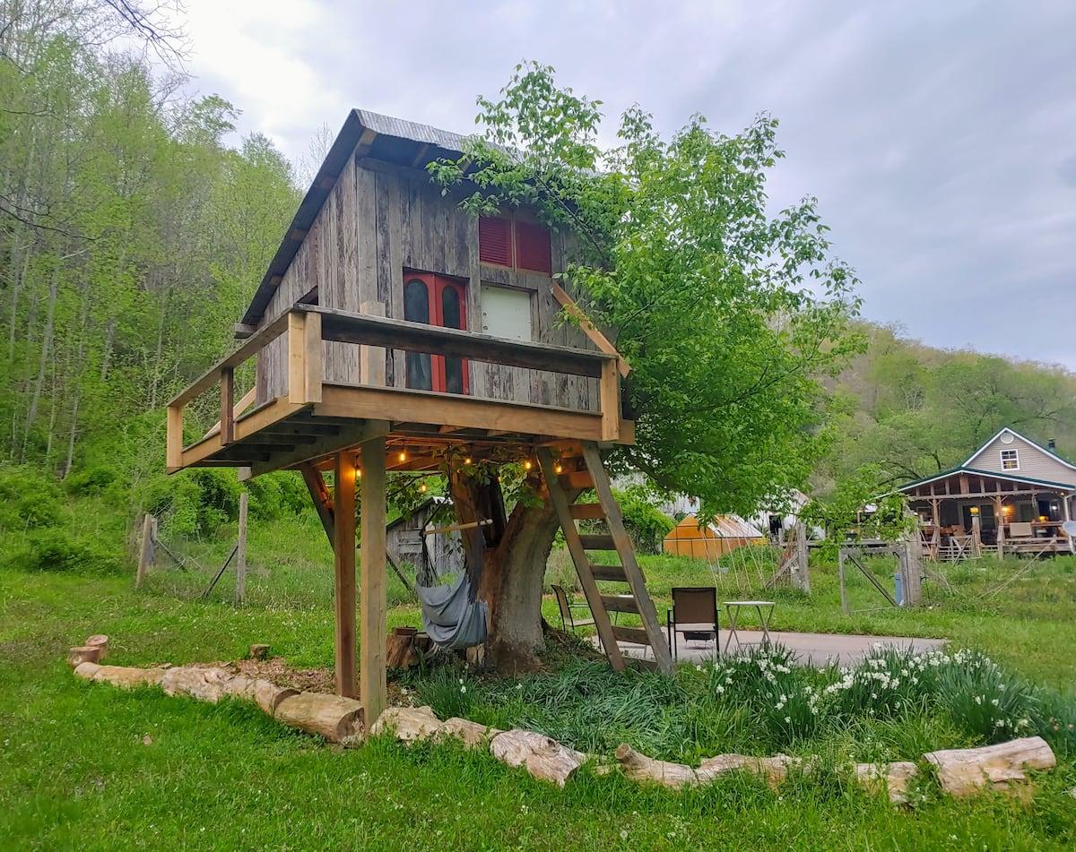 Treehouse Rentals West Virginia