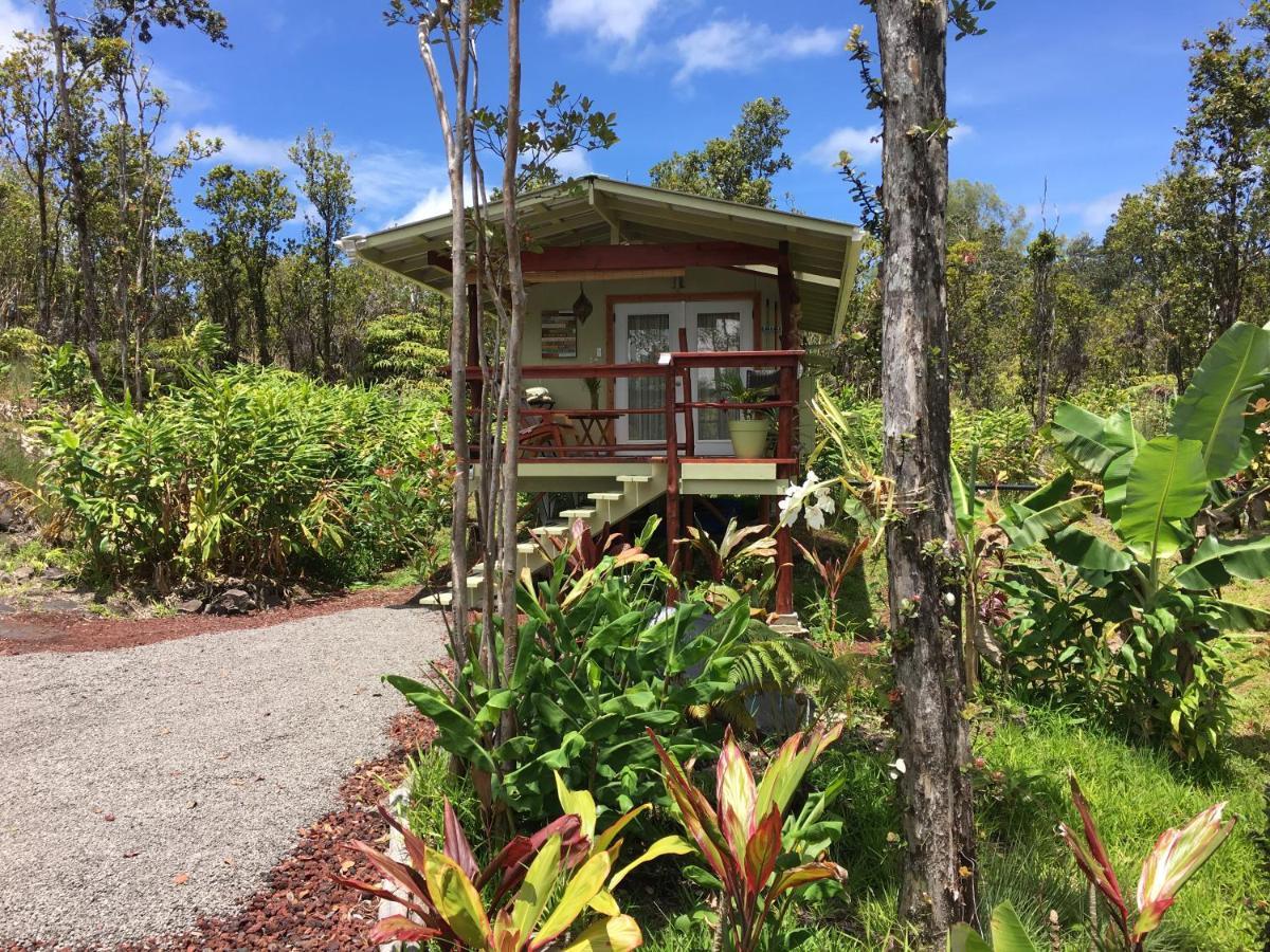 Rainforest Eco Cabin Hawaii