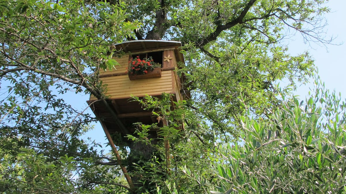 Chestnuttree Treehouse