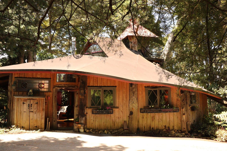 Fairytale Treehouse Airbnb NZ