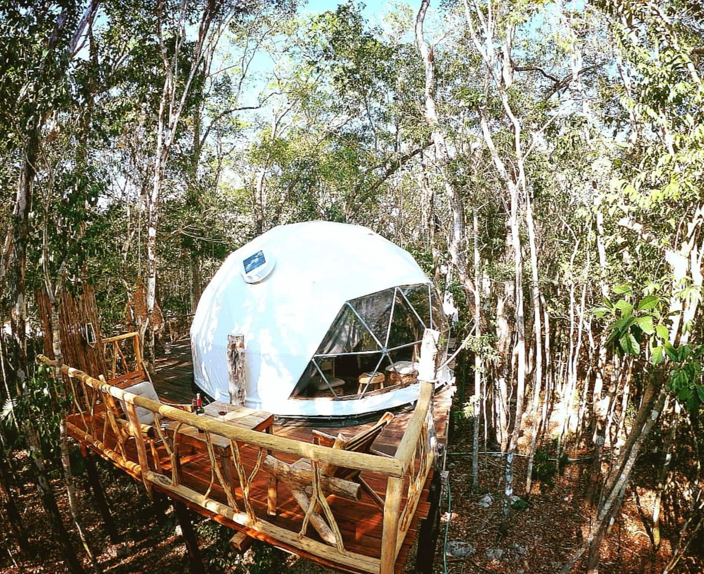 Jungle Eco Tree House in Mexico Airbnb