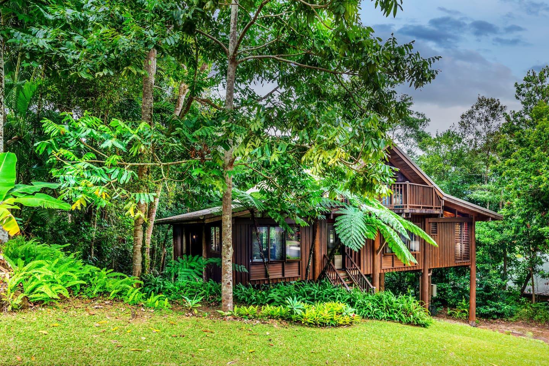 Kardinia House - Treehouse Rainforest Retreat