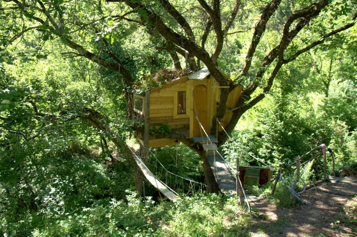 Real Tree Cabin in Italy