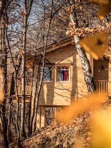 The Casalot Nest Treehouse Rental