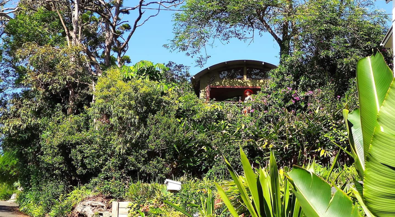 The Ocean Treehouse Airbnb Queensland Australia
