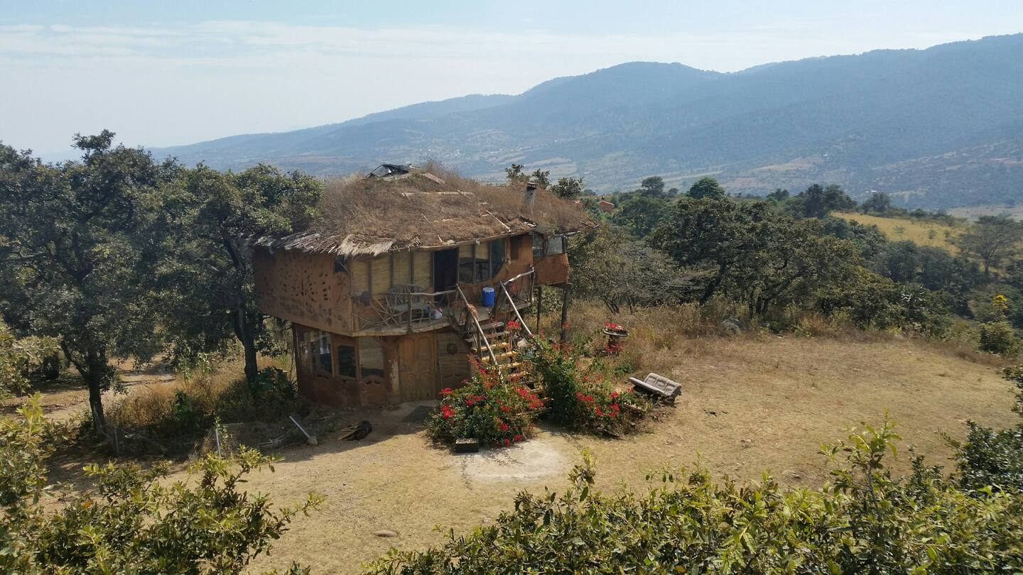 Unique Treehouse Rental in Mexico